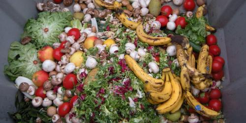 17% of all food available at consumer levels was wasted in 2019, reveals Food Waste Index