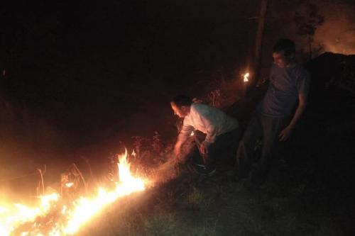 उत्तराखंड के जंगलों की आग रोकने के लिए कितनी गंभीर है सरकार