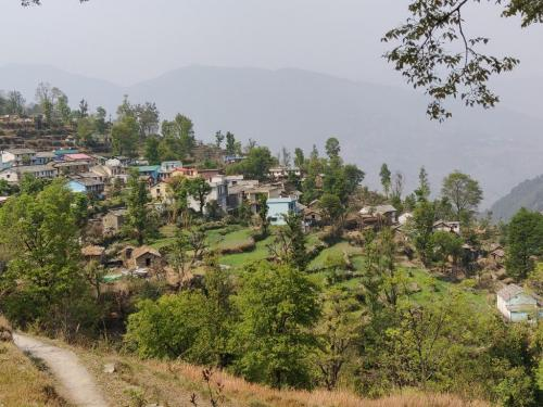 Massive surge in COVID-19 infections in Uttarakhand's remote villages. But who will treat them?