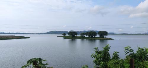 How Assam's Deepor Beel is perishing from concretisation, waste dumping