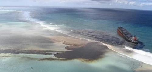 Researchers develop super-hydrophobic cotton for oil-spill cleanup