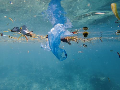 Why plastic piling in oceans post COVID-19 needs urgent attention