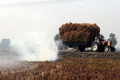 Can biomass co-firing offer a viable solution to coal shortage and stubble burning?
