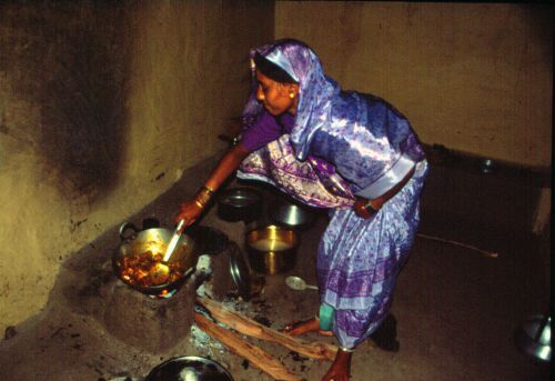 Women's perceptions of cooking fuel hamper transition to clean energy: Study