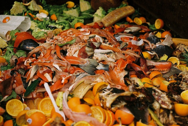 Global food loss and waste annually generates 4.4 gigatonnes of carbon dioxide (C02) equivalent or about 8 per cent of the total greenhouse gas (GHG) emissions