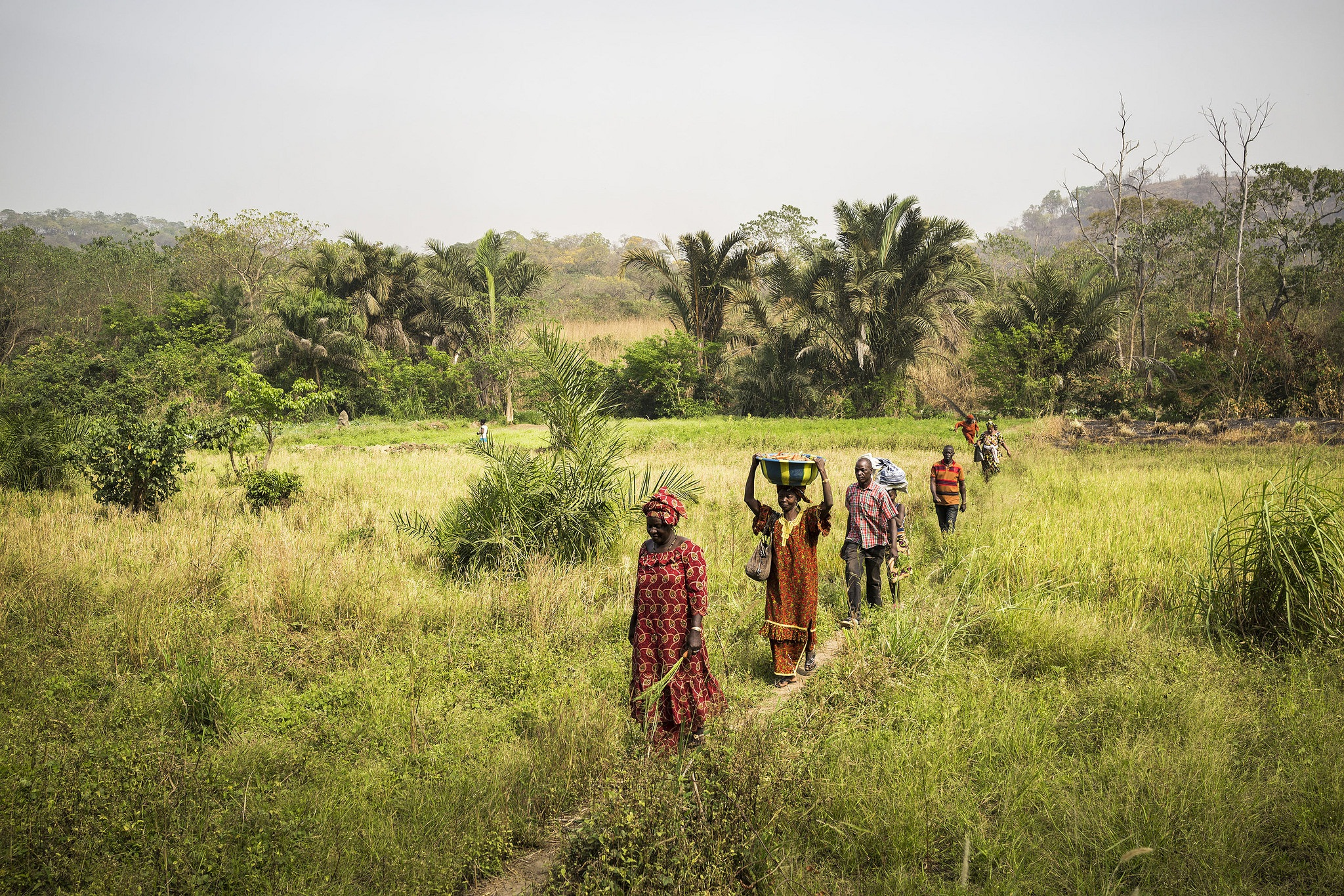Around 570 millions farms across the world are facing the threat of climate change at present Credit: FAO Flickr photostream