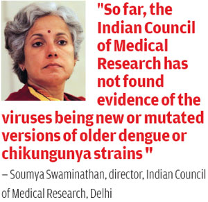 Are we losing the war on dengue, chikungunya and mystery fever?