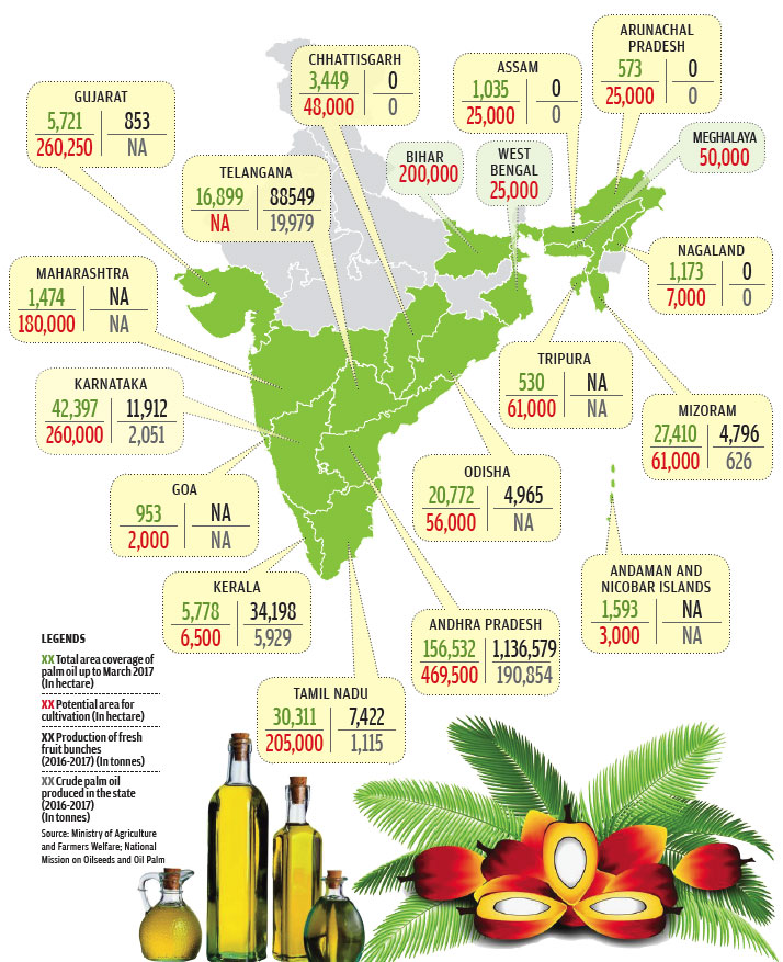 Source: Ministry of Agriculture and Farmers Welfare; National Mission on Oilseeds and Oil Palm