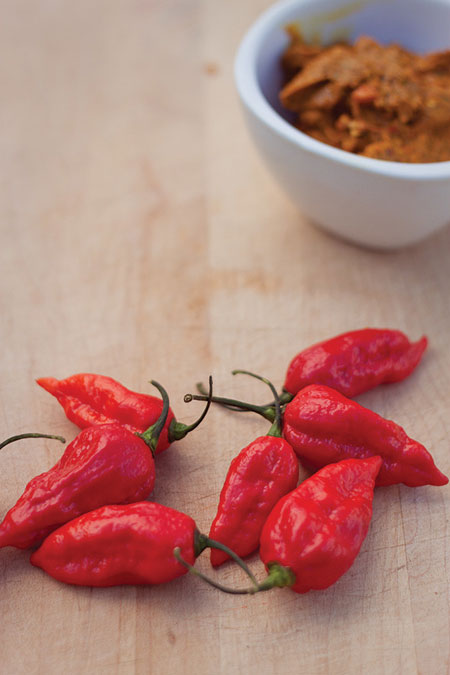 Apart from its edible purposes, bhut jolokia is also used in tear gas and pepper sprays (Photograph: Sharon Drummond)