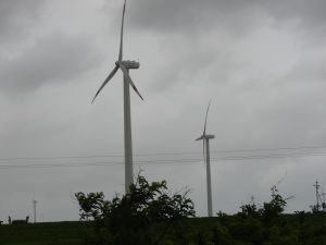 Draft wind power development guidelines fall short in ensuring environmental protection