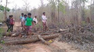 Chhattisgarh communities assert forest rights