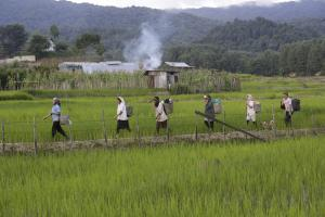 World Food Day: our agriculture must keep pace with changing climate