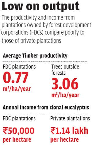 Source: 'The puzzle of forest productivity' by CSE