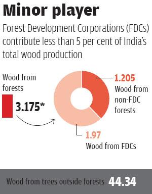 Source: `The puzzle of forest productivity' by CSE;<br>