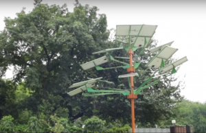 Solar trees are beneficial in a land-scarce economy