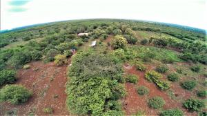 Aranya Farm, a permaculture site in Telangana. Credit: Praveen Teegala, IPC India