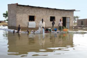 2012 में चाड में आई बाढ़ का दृश्य। चारी और लोगोन नदियों के जलस्तर में बढ़ोतरी के कारण पानी ने कई इलाकों को अपनी जद में ले लिया (पियरे पेरोन / ओसीएचए)