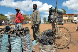 भूमि के कम उपजाऊपन और सूखे ने कई समुदायों का खेती छोड़कर चारकोल उत्पादन से जुड़ने पर बाध्य कर दिया है (वर्ल्ड एग्रोफोरेस्ट्री सेंटर)