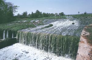 प्रदूषण तालाबों को चौपट कर रहा है। पानी लाने वाली नालियां अब इसमें घरेलू मोरियों का कचरा भरने लगी हैं (फोटो: अंजू शर्मा / सीएसई)