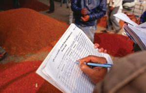 इटारसी मंडी का दौरा करने के बाद पता चला कि ज्यादातर बिक्री मॉडल रेट से कम पर हुई है (फोटो : विकास चौधरी / सीएसई )