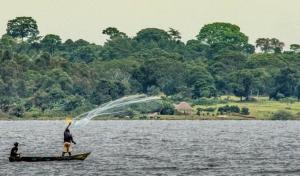 '76% of Lake Victoria's endemic biodiversity at risk of extinction'