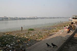 नदियों में प्रदूषण की निगरानी के लिए मिला नया तरीका