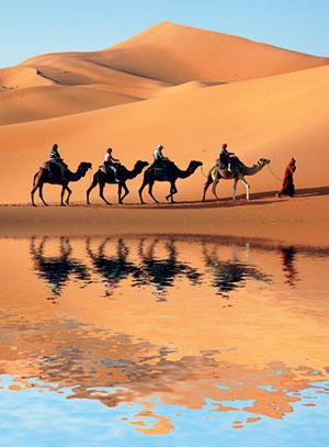 0cc00076dd The Sahara Desert has expanded by about 10 per cent, which is close to a