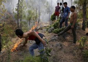 Himachal Pradesh forest fires: Dhamarshala, Kasauli pine for respite
