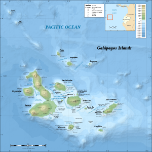 A map of the Galapagos Archipelago showing Fernandina islands where the volcano has exploded             Credit: Wikimedia Commons