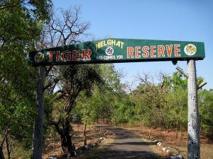 Railway gauge conversion threatens Maharashtra's Melghat Tiger Reserve