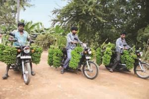 Naidu's 'mind game' behind building Andhra's new capital