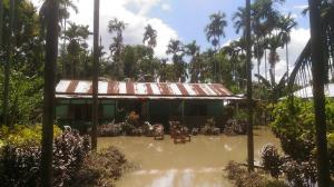 Thousands marooned in a 'dam-induced' flood in Golaghat