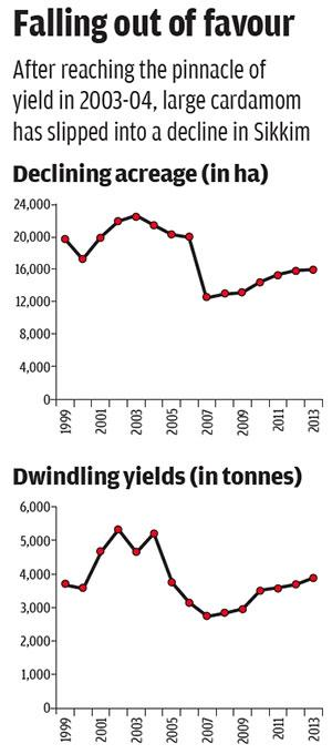 Source: Ghanashyam Sharma et al 2016, Declining Large-Cardamom Production Systems in the Sikkim Himalayas: Climate Change Impacts, Agroeconomic Potential, and Revival Strategies