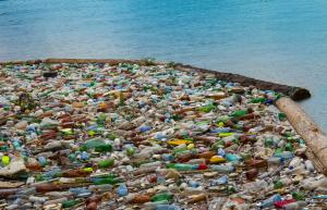 Coca-Cola, PepsiCo, Nestlé worst plastic polluters in global cleanups, brand audits