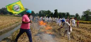 Crop burning in Punjab
