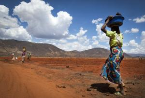 'Achieving zero hunger requires agriculture to be sustainable, climate smart'