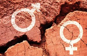 No way of knowing progress of 74% gender-related SDGs