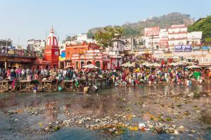 80% of Ganga will be clean by March 2019: Gadkari