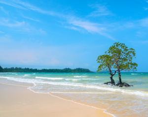 US national allegedly killed by Sentinelese tribesmen in the Andamans