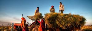 It's time we shift farmers' economic burden