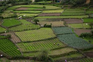 Land fragmentation