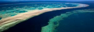 Adani to fully finance controversial Oz Carmichael mine