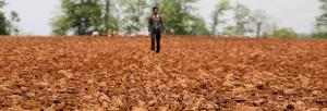World Soil Day: Tackle soil pollution and do away with food insecurity, says FAO