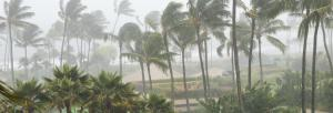 Andhra, Tamil Nadu set to be rocked by severe cyclone in next two days