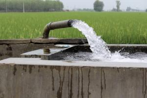 Indo-Pak study reveals extensive arsenic problem in Punjab groundwater