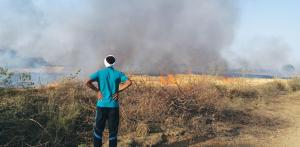 Crop burning in 2018 lesser than previous year, claims govt
