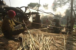 Centre relaxes environmental clearance for sugar mills