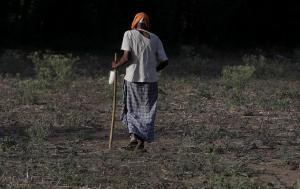 सूखे का दंश : कर्नाटक का जल संकट पैसा बहाने से खत्म नहीं होगा