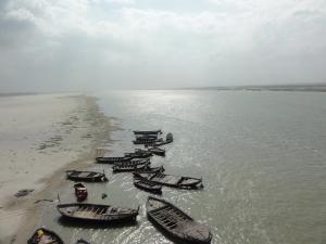 Bihar plans afforestation drive in villages along Ganga river
