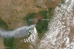 UNESCO Director-General deplores fires in Mount Kenya National Park